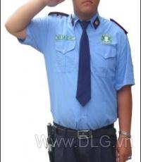 Bảo vệ, vệ sỹ