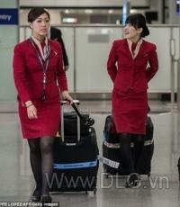 Trang phục tiếp viên HK20
